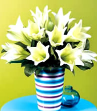 Image of Easter Flowers Lillies